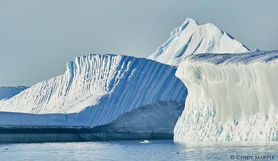 Iceberg near Cuverville