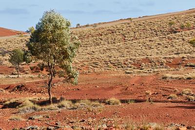 Flinders Range