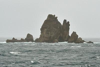 Snares Islands
