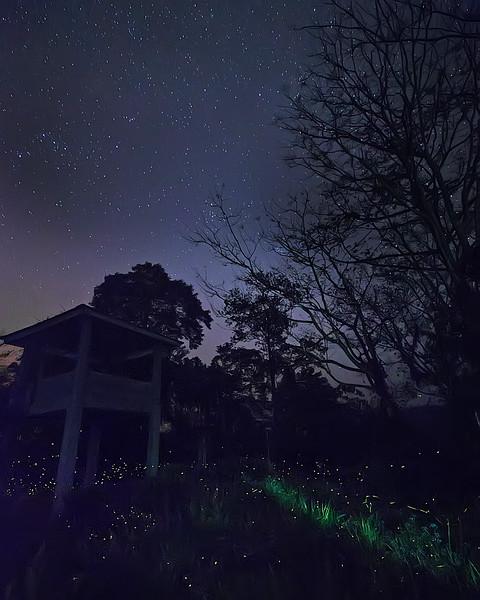 Nighttime at Pakke Wildlife Sanctuary