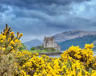This is a photograph of Eilean Donan Castle near Dornie, Scotland (5/06).  A portion of the movie Highlander was shot at this location.