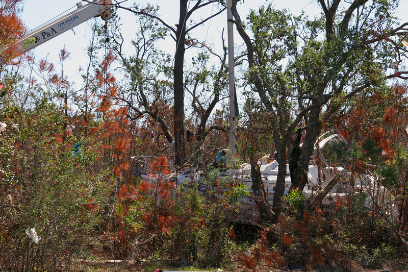 This is a picture of a sailboat that was lodged within a wooded area.  In the upper left of the picture you can see a crane boom attempting to remove it from the trees.