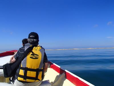17-19 Feb 2017 Magdalena Bay Whale Camp