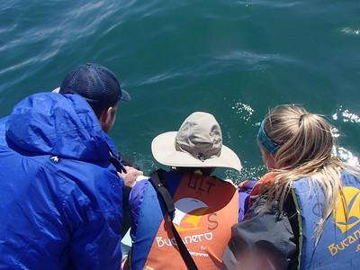 19-21 Feb 2017 Magdalena Bay Whale Camp