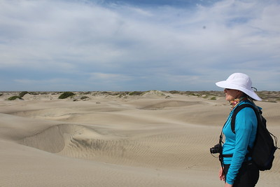 Sara and the dunes