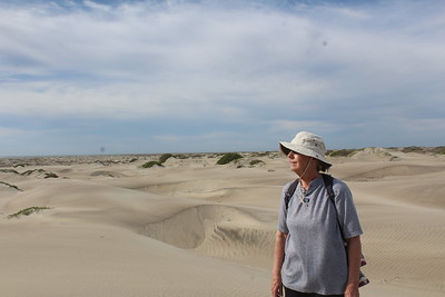 Barbara and the dunes