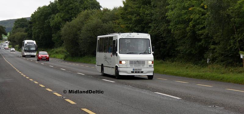 Callinan 96-DL-6557, Ballymaken Portlaoise, 04-09-2017