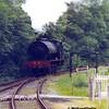 WD 71516, Gwili Railway, 05-06-1998