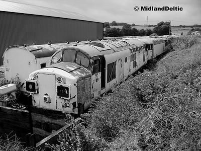 37079, Barrow Hill, 09-07-2006