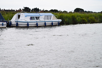 Trip To Norfolk Broads