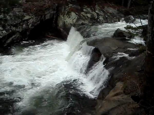 VIDEO  Baby Falls on Tellico River