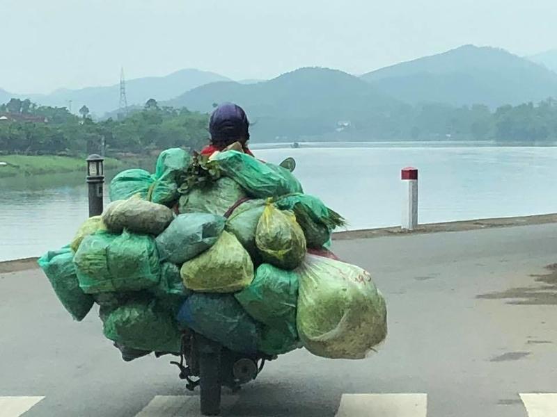. photo courtesy Patrick Birgy and Eddie Kennedy -   A trip to Vietnam