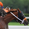 Ruler on Ice, Jose Valdivia up (orange and pink silks) wins the 143rd Belmont Stakes,  Belmont Park, Elmont, NY 6/11/11, photo by Mathea Kelley; passing Shackleford