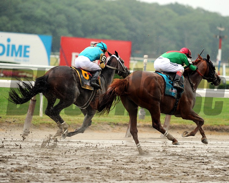 Animal Kingdom during the running of the 2011 Belmont Stakes<br /> Dave W. Harmon