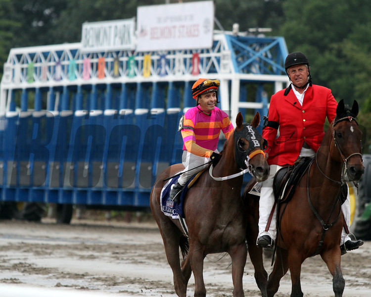 Ruler On Ice w/Jose Valdivia Jr. up head to the winner's circle after winning the 143rd Running of the Belmont Stakes at Belmont Park on June 11, 2011.<br /> Photo by: Rick Samuels