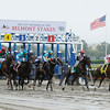The field of 12 leaves the gate at the start of the 143rd running of the Belmont Stakes at  Belmont Park in Elmont, N.Y. June 11, 2011.    <br /> Photo by: Skip Dickstein