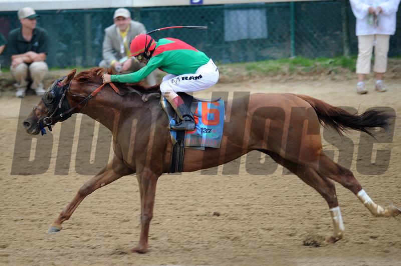 Animal Kingdom John Velazqueaz up, wins the 137th Kentucky Derby ; Churchill Downs, Louisville, kY 5/7/11 photo by Mathea Kelley