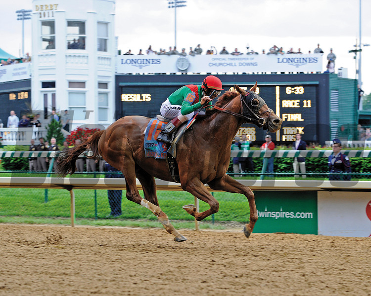 Animal Kingdom with John Velasquez up wins the Kentucky Derby (gr. I).<br /> Kentucky Derby day at Churchill Downs near Louisville, Ky. on May 7, 2011<br /> Photo by Anne M. Eberhardt