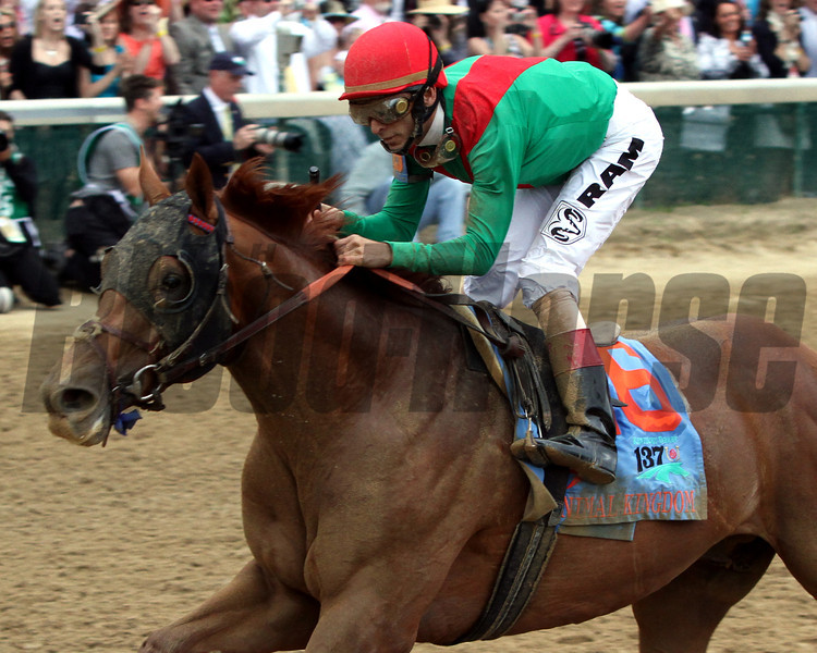 Animal Kingdom w/John Velazquez up wins the 137th Running of the Kentucky Derby at Churchill Downs on May 7, 2011.<br /> Photo by: Chad Harmon
