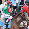 Animal Kingdom John Velazqueaz up, wins the 137th Kentucky Derby ; Churchill Downs, Louisville, kY 5/7/11 photo by Mathea Kelley