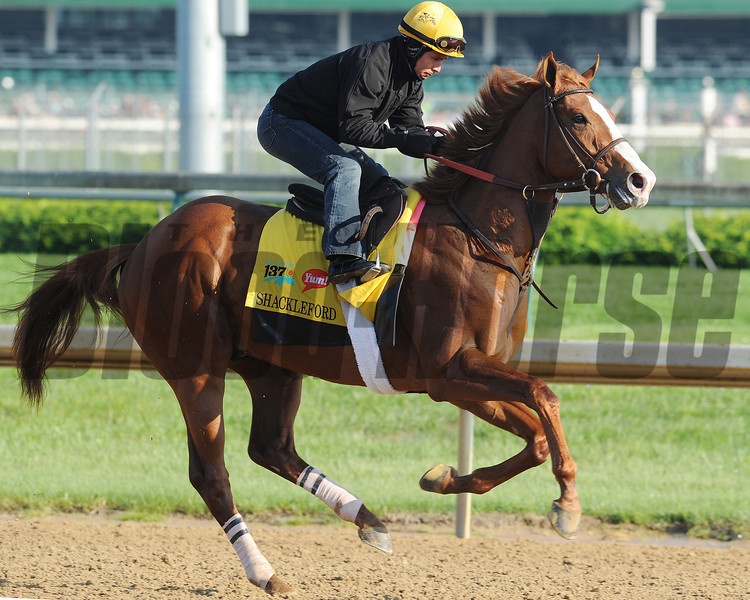 Shackleford at Churchill Downs, Louisville, KY 5/5/11, <br /> Photo by: Mathea Kelley