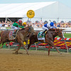 Shackleford with Jesus Castanon up wins the Preakness Stakes (gr. I) with Animal Kingdom and John Velazquez in second  at Pimlico on Preakness day, May 21, 2011, at Pimlico Racecourse in Baltimore, Md.<br /> Photo by Anne M. Eberhardt