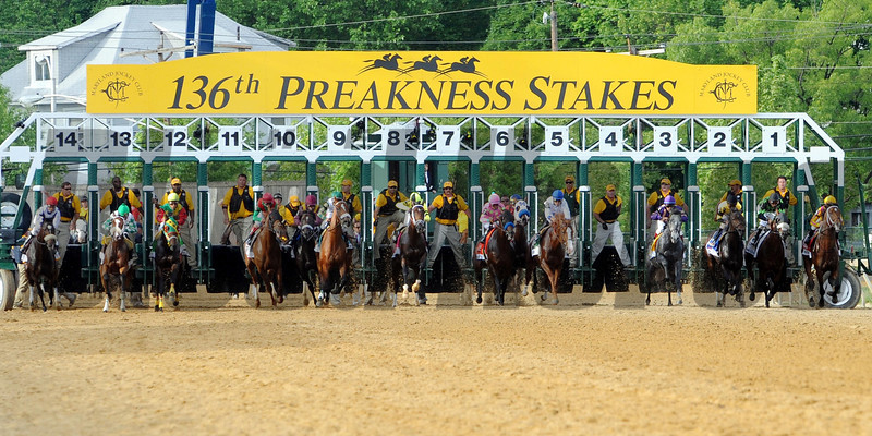 Start of the 136th Preakness<br /> Shackleford wins the Preakness on May 21, 2011, at PImlico in Baltimore, Maryland<br /> Photo by: Dave Harmon
