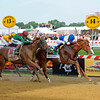 Caption: Shackleford with Jesus Castanon up wins the Preakness Stakes (gr. I) with Animal Kingdom and John Velazquez in second  at Pimlico on Preakness day, May 21, 2011, at Pimlico Racecourse in Baltimore, Md.<br /> Photo by Anne M. Eberhardt