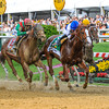 With Animal Kingdom making one last move on the outside Shackleford with jockey Jesus Lopez Castanon in the irons holds him off to win the 136 running of The Preakness at Pimlico Race Course May 21, 2011.     <br /> Photo by: Skip Dickstein