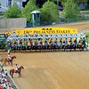 Start of the Preakness Stakes 2011<br /> Chad B. Harmon Photo