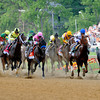 The field in the 136th running of The Preakness moves down the stretch for the first time with Shackleford leading at this point at Pimlico Race Course May 21, 2011.     <br /> Photo by: Skip Dickstein