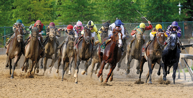 Shackleford (blaze) leads the field into the stretch,, en-route to winning the Preakness Stakes at Pimlico.<br /> Kentucky Derby winner Animal Kingdom, third from left makes his move to finish a half lengh second and Astrology, (yellow cap) was third<br /> Photo by: Rick Samuels