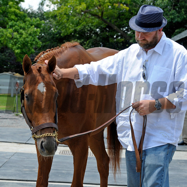 Caption:  trainer Doug O'Neill pats I'll Have Another during news conference to announce his retirement<br /> Belmont Park, June 8, 2012, Elmont, N.Y.<br /> Training hours activity on the track and at the barn.<br /> Photo by Anne M. Eberhardt