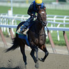 Paynter on the track 6/8/12. <br /> Photo by Skip Dickstein