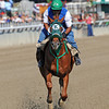 Ravelo's Boy Friday morning...<br />  © 2012 Rick Samuels/The Blood-Horse
