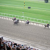 The field in the stretch during the 144th Running of the Belmont Stakes at Belmont Park on June 9, 2012.<br /> Photo by Chad Harmon