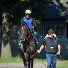 Paynter comes to the track 6/8/12.  <br /> Photo by Skip Dickstein