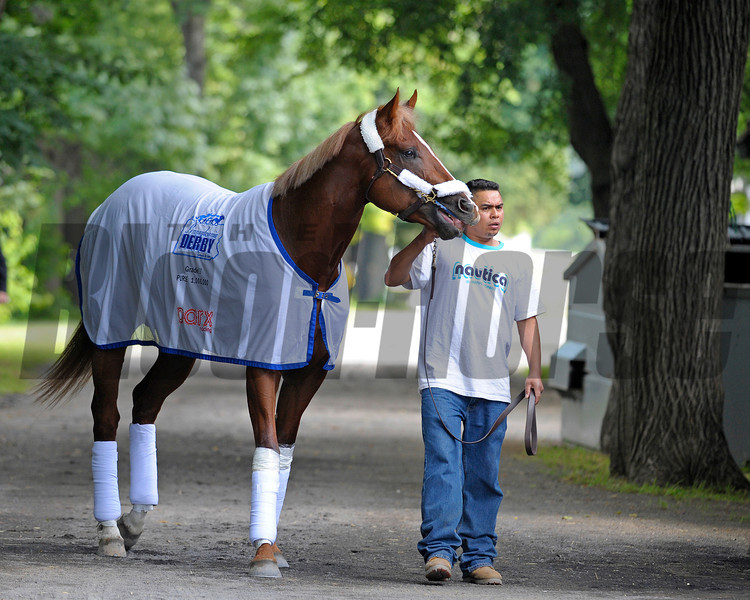 Caption:  Guyana Star Dweej arrives at Belmont Stakes contenders' barn 2.<br /> Belmont Park, June 6, 2012, Elmont, N.Y.<br /> Training hours activity on the track and at the barn.<br /> Photo by Anne M. Eberhardt