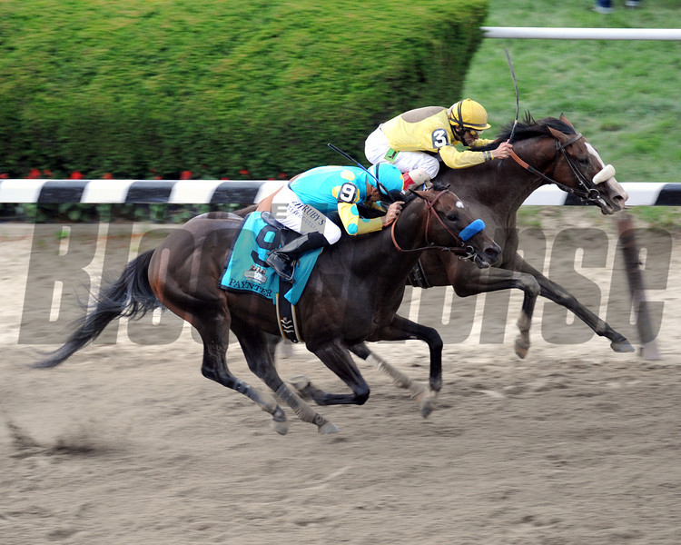 Union Rags w/John Velazquez up sneaks through on the rail to beat Paynter w/Mike Smith up during the 144th Running of the Belmont Stakes at Belmont Park on June 9, 2012.<br /> Photo by Chad Harmon