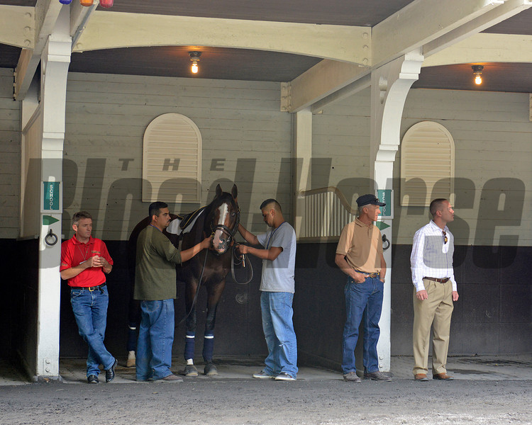 Caption:  Union Rags schooling in the paddock. l-r, Peter Brette (red), trainers Michael Matz, second right and Chad Brown<br /> Belmont Park, June 7, 2012, Elmont, N.Y.<br /> Training hours activity on the track and at the barn.<br /> Photo by Anne M. Eberhardt
