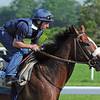 Union Rags Friday morning...<br />  © 2012 Rick Samuels/The Blood-Horse