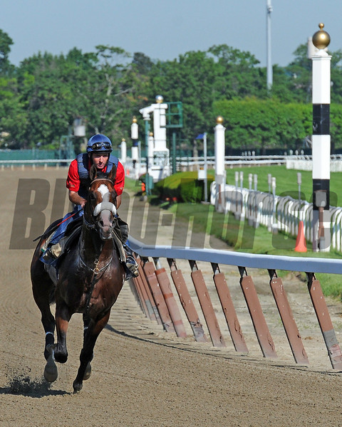 Union Rags has a strong gallop Thursday morning at Belmont...<br /> © 2012 Rick Samuels/The Blood-Horse