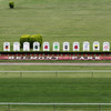 A new sign will not be added to the triple crown winners this year at Belmont Park on June 9, 2012.<br /> Photo by Chad Harmon