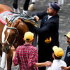 I'll Have Another Retirement before the Belmont Stakes.  Doug O'Neill unsaddles IHA while Mario Gutierrez looks on.  Belmont Park, 6/9/12.<br /> Photo by Steve Heuertz