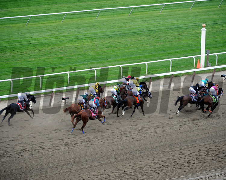 The field for the 144th Running of the Belmont Stakes passes the clubhouse stands for the first time at Belmont Park on June 9, 2012.<br /> Photo by Chad Harmon