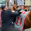 I'll Have Another is unsaddled for the final time by his trainer Doug O'Neil winner's circle during his retirement ceremony before The Belmont Stakes at Belmont Park in Elmont, N.Y. June 9, 2012.  Photo by Skip Dickstein