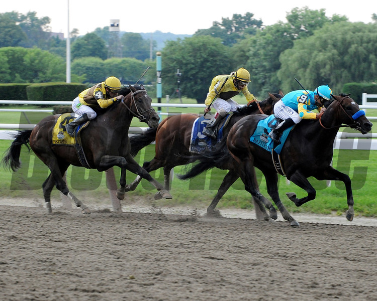 STRETCH OF THE 144TH BELMONT STAKES<br /> Photo by Dave Harmon