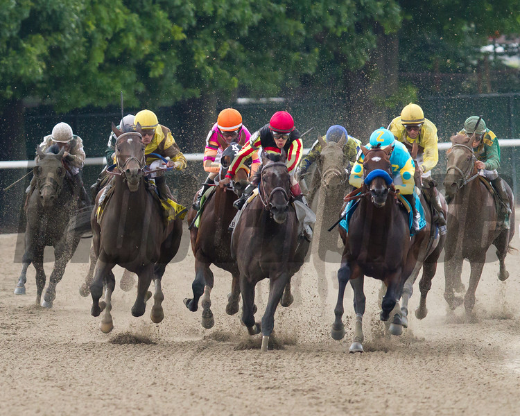 Belmont Stakes field enters the stretch. Paynter with Mike Smith up leads the way.  Belmont Park, 6/9/12.<br /> Photo by Steve Heuertz