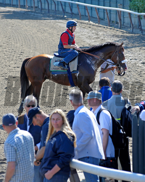 Caption:  Union Rags with Peter Brette leaves the track.<br /> Belmont Park, June 7, 2012, Elmont, N.Y.<br /> Training hours activity on the track and at the barn.<br /> Photo by Anne M. Eberhardt