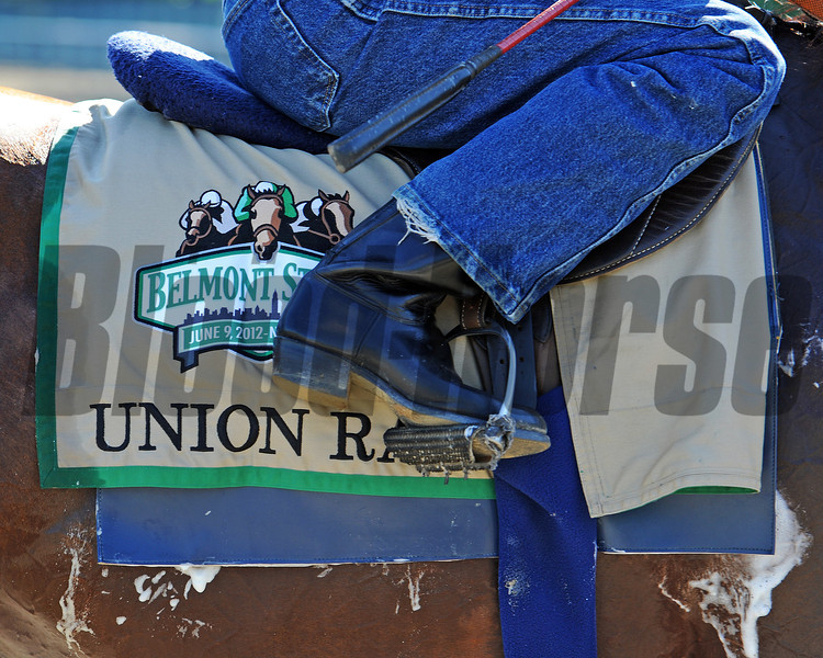 Union Rags <br /> © 2012 Rick Samuels/The Blood-Horse